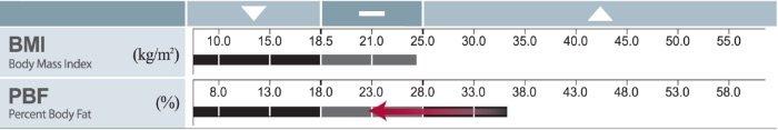 InBody Composition Analysis Obesity Analysis Houston